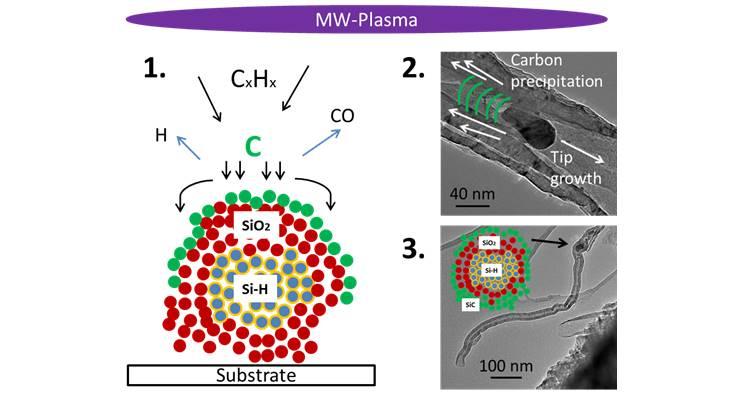 Carbon nanotubes on Silicon nanocrystals (ACS Appl Mater Interfaces 8, 2016, 19012)