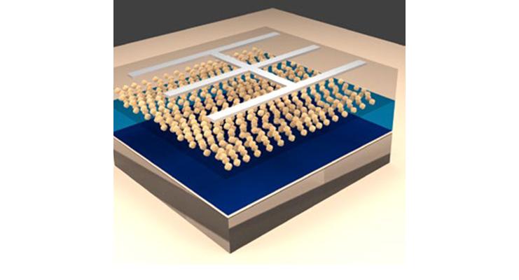 Ultrathin silicon nanocrystal solar cells (Energy Sci Eng 5, 2017, 184)